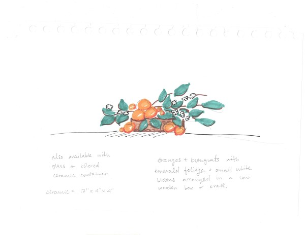 orange arrangement sketch