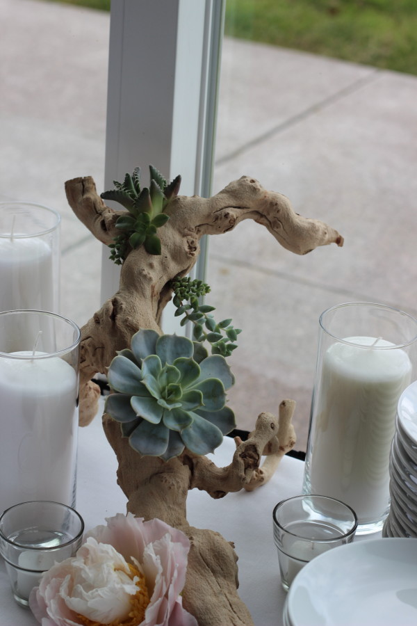 succulent grape wood decoration by anastasia floral